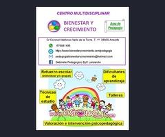 Clases particulares y servicios pedagógicos