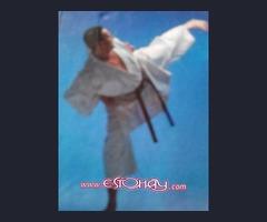 karate defensa personal