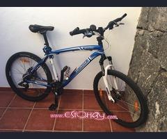 Bici mountain Spezialized
