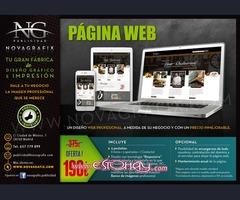 Diseño página web profesional