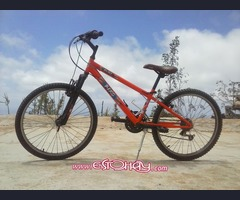 Vendo bici Blast Berg Junior
