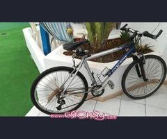Bicicleta montaña perfecto estado
