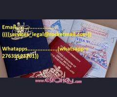 licencia de conducir y tarjetas de identificación