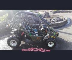 PGO 150 bug rider