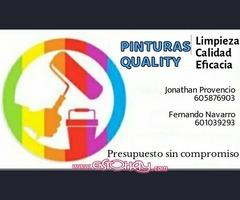 PINTORES PROFESIONALES ECONOMICOS