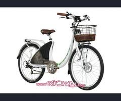Se Vende Empresa De Alquiler y Venta de Vehiculos Electricos