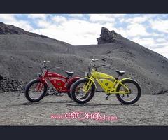 Bicicleta eléctrica/Fatbike/retro