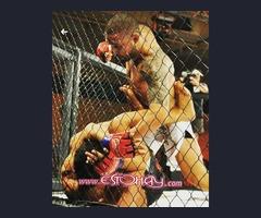 Clases Grupales y Personalizadas. Deportes de Combate y Artes Marciales