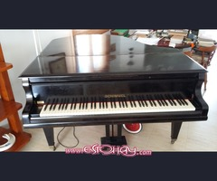 SE VENDE PIANO DE COLA SCHIMMEL