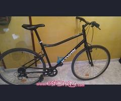 Bicicleta Btwin riverside 100(VENDIDA)