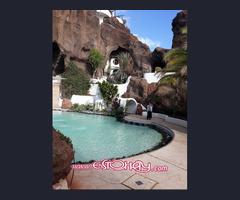 Mantenimiento de Jardineria, piscinas y limpieza en general
